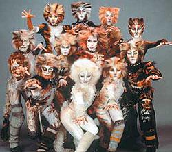 imagem cats musical